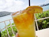 blu_water_plantation_icedtea